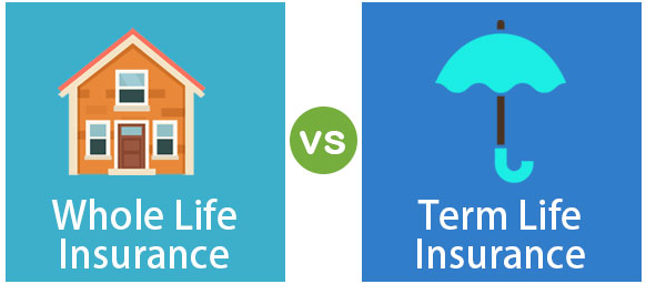 Whole Life Insurance or Term? A definitive guide.